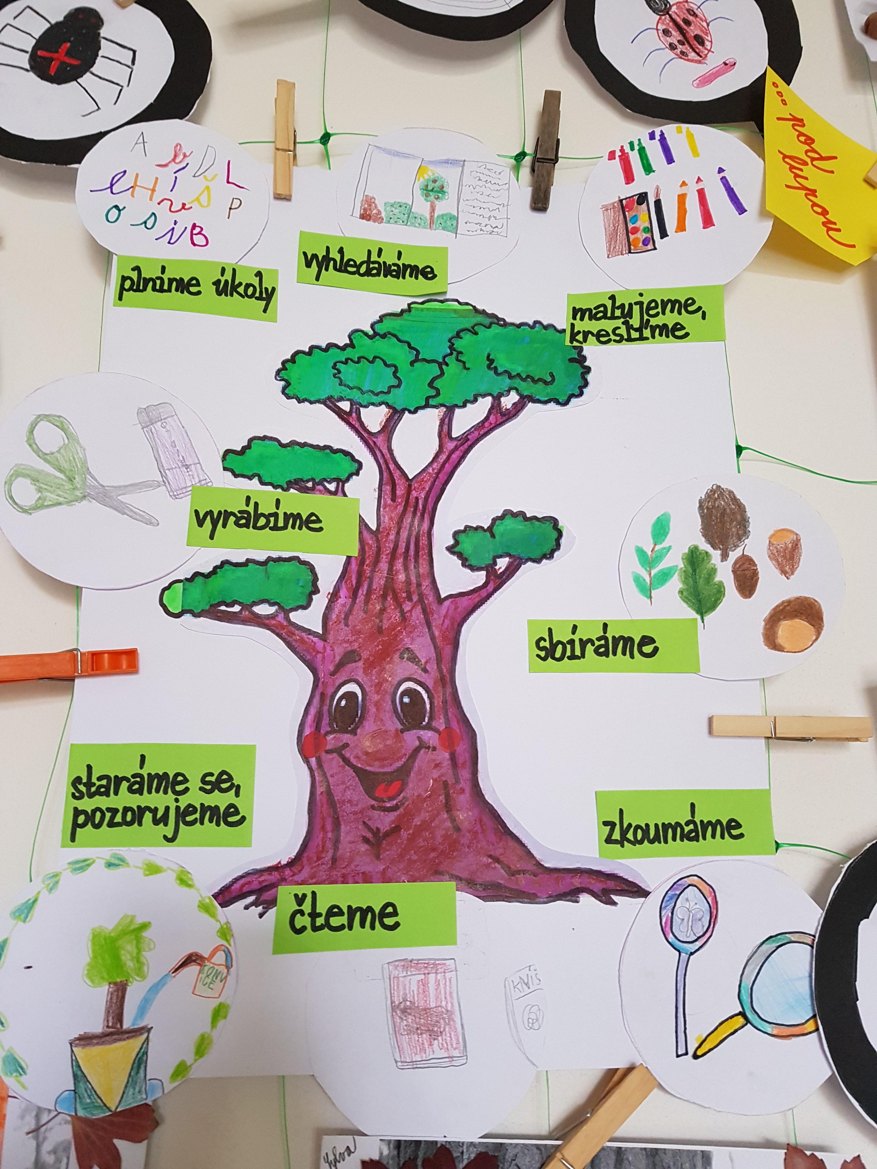 Děti v družině poznávají tajemství stromů